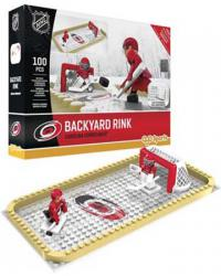 Backyard Rink Carolina Hurricanes